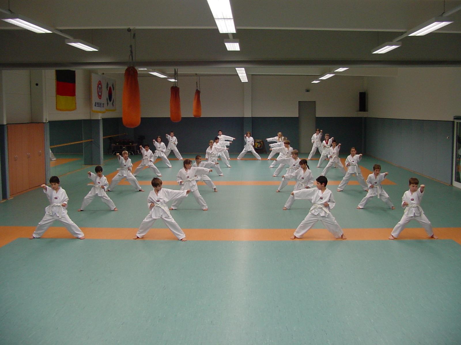 kids_taekwondo_2