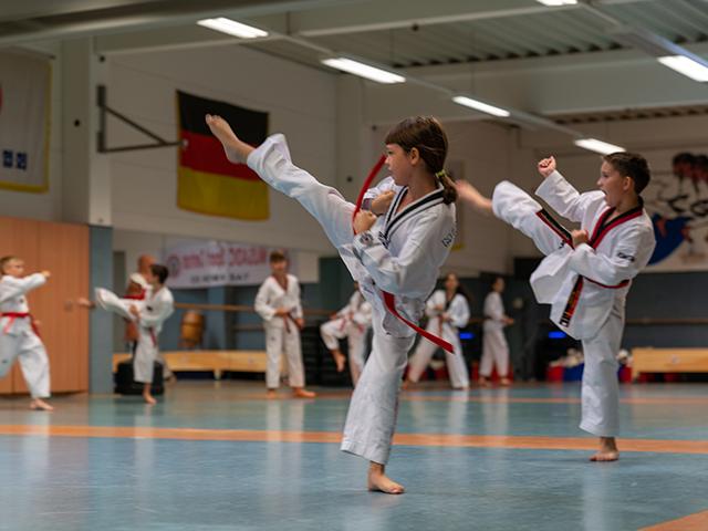 taekwondofoerdert1